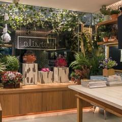 Rio Garden Design Paisagismo - Parceria escritório de Arte